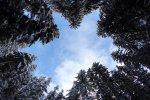 Zdjęcie z powietrza